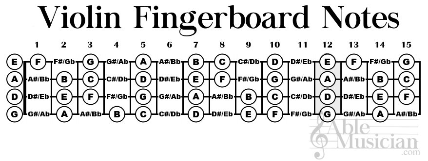 Violin fingerboard Notes infographic